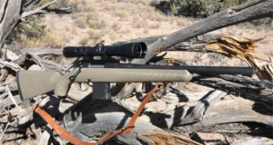 .223 Ruger Ranch RIfle